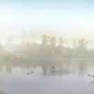 Morning Life by Igor Zenin