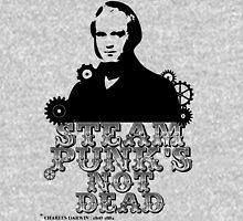 Charles Darwin was a punk Hoodie