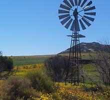 Windpomp by Harrietza