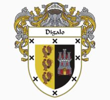 Digalo Coat of Arms/Family Crest by William Martin