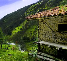 Mud Hut In The Cajas by Al Bourassa