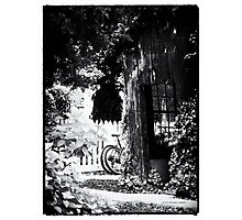 Tucked Away Photographic Print