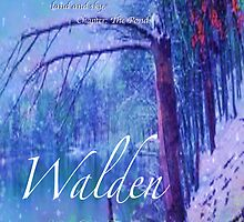Walden Pond by KayeDreamsART