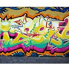 Graffiti Art Wall by paintcave