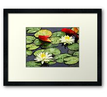 Water Lily Pond in Autumn Framed Print