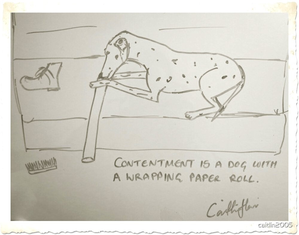 Dog & Wrapping paper roll by caitlin2005