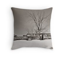 Winter Foundation Throw Pillow