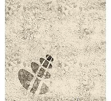 Platitudes Photographic Print