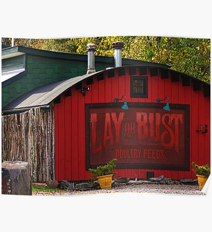 Lay or Bust Poster