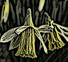 Daffodil Woodcut by Adrian Matthews