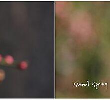Sweet Spring by Marie Wintzer
