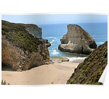 Summer of Santa Cruz Poster