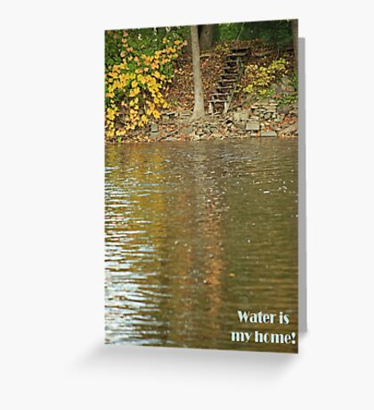 Water is my home! Greeting Card