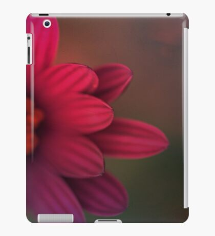 Flower Power iPad Case/Skin