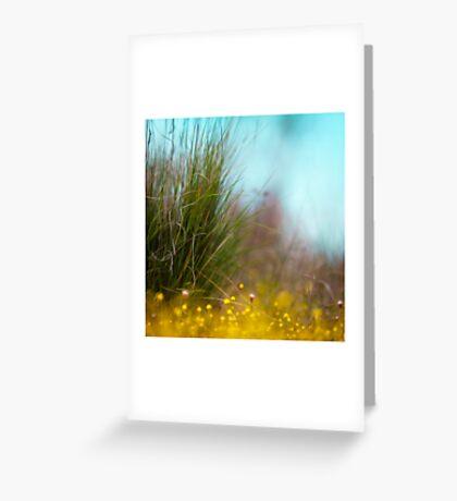 Faerie undergrowth Greeting Card