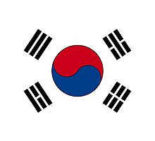 Flag of South Korea by boogeyman