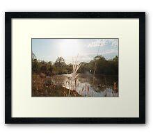 Farm Pond Framed Print
