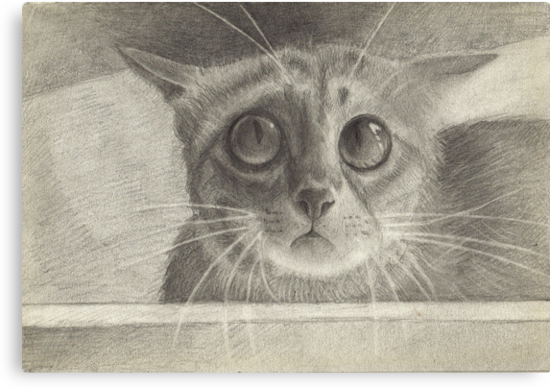Ginger Cat by littlebearpooky