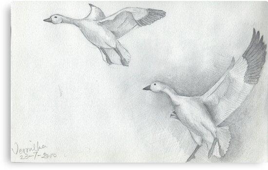 Snow Goose Flying by littlebearpooky