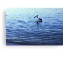 Pelican at dusk Canvas Print