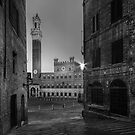 Piazza del Campo, Siena, Italy by Bryan Peterson