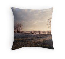 Winter in Suffolk Throw Pillow