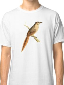 African Soft-tail by William Swainson Classic T-Shirt