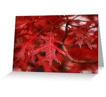 Red October Greeting Card