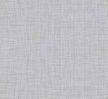 Grey Linen by kwg2200