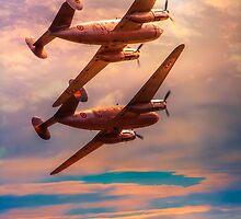 Flights Of Fancy by Chris Lord
