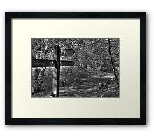 HAUGHTON VALE Framed Print