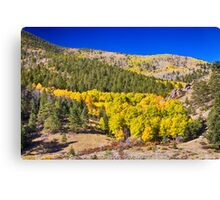 Colorado Gold Blue Canvas Print