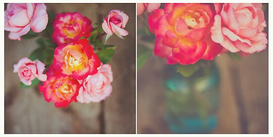 April Diptych 2014 by Lisa  Epp