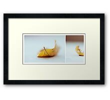 October Diptych 2014 Framed Print