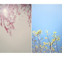 December Diptych 2014 by Lisa  Epp