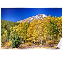 Rocky Mountain Autumn Bonanza Poster