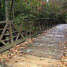 Bridge over troubled waters by Sherri Hamilton