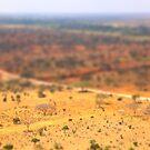 Tiltshift Kenya by Pippa Carvell