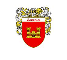 Gonzales Coat of Arms/Family Crest Photographic Print