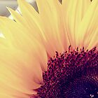 Sunflower by hannahsylvia