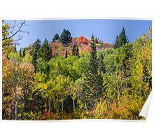 Autumn, Lambs Canyon, Utah Poster