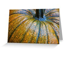 Pumpkin Pumpkin Greeting Card