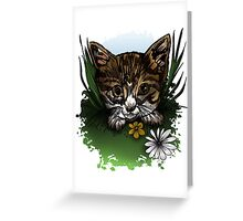 Calico Kitty Greeting Card
