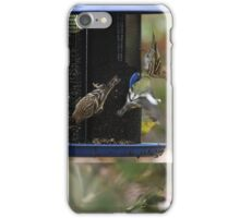 Flurry of Wings! iPhone Case/Skin