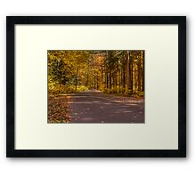 Country Road In Color Framed Print