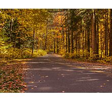 Country Road In Color Photographic Print