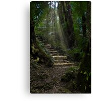 Golden Stairs Canvas Print