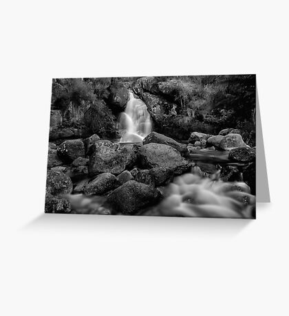 Bathed in Black Greeting Card