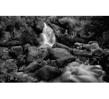 Bathed in Black Photographic Print
