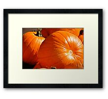 Fresh From the Pumpkin Patch! Framed Print